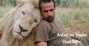 kevin richardson aslan dostluğu