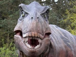 t-rex resmi