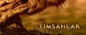 timsah belgeseli
